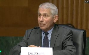 Sen. Rand Paul makes criminal referral to Justice Dept.  against Fauci